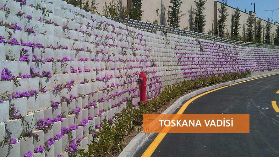Toskana_Vadisi_Anasayfa